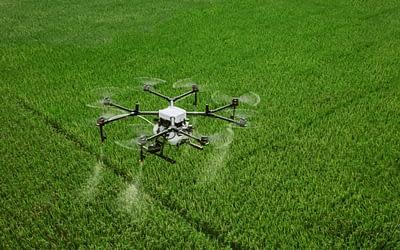 Quantos hectares um drone pulveriza por dia?
