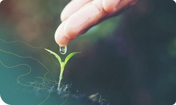 Serviços o meio ambiente