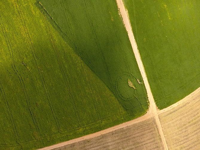 Imagem de campo verde capturada por drone