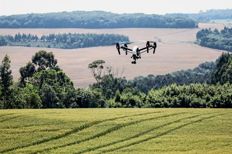 Drones trazem soluções importantes para problemas comuns acerca do meio ambiente/Foto: Mauro Zafalon/Folhapress