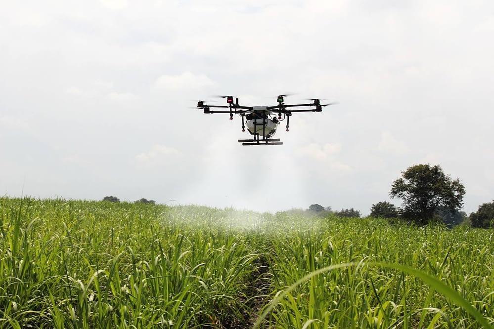 Drone realizando pulverização na vegetação